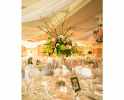 Ceiling drape fabric rentals Chicago special wedding events