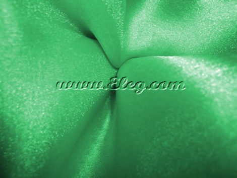 emerald green organza