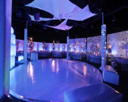 Party Dance Floor Rentals, Wedding Dance Floor Rental Chicago, chicago wedding rentals