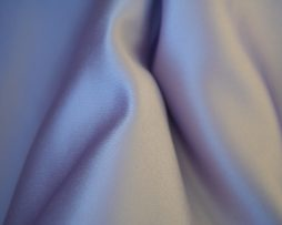 wisteria lamour