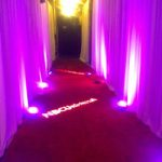 rent red carpet chicago special event party hallway red stanchion